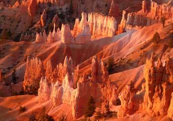 tour dei parchi americani - bryce canyon
