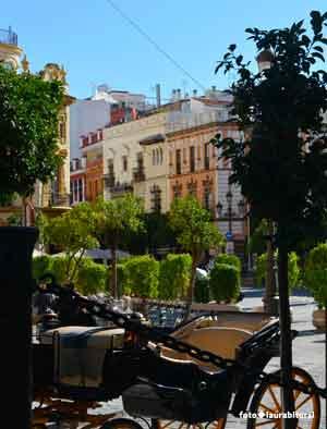 Viaggio organizzato in Andalusia